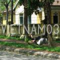 image_vietnam03