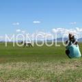 image_mongol02