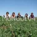 image_mongol04