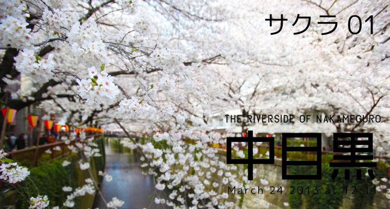 2013sakura_nakameguro