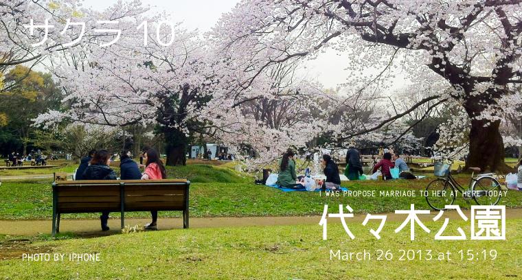 2013sakura_yoyogipark