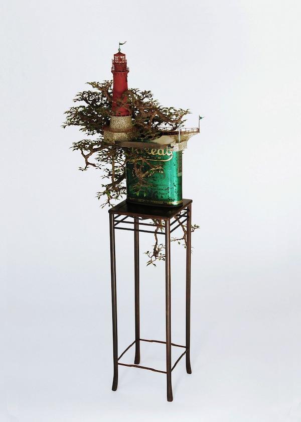 bonsai-01